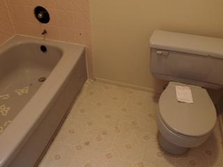 W2F2_2011_Bathroom-2